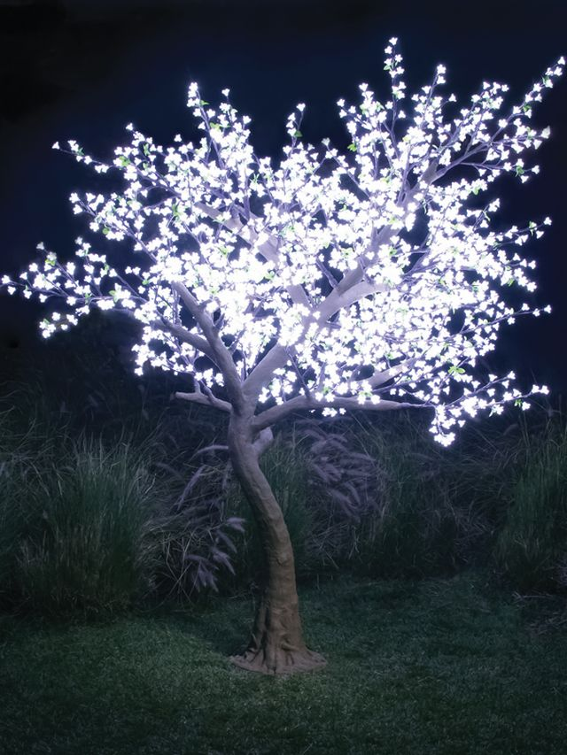 Light tree idealstalist light tree aloadofball Gallery