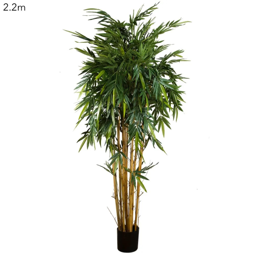 New Bamboo 2.2m|